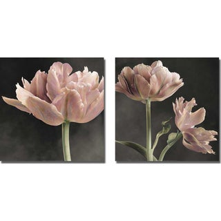 Sondra Wompler 'Tulip I and II' 2-piece Canvas Art Set - Multi