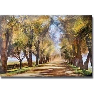Harold Davis 'Aisle of Sight' Canvas Art