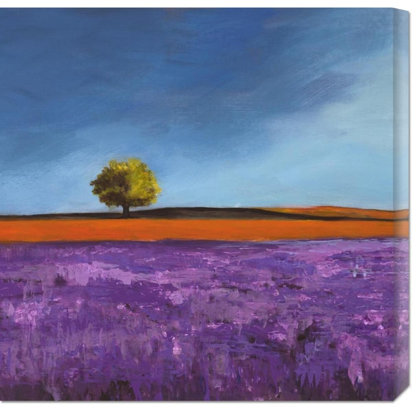 Global Gallery Philip Bloom 'Field of Lavender (Left Detail)' Stretched Canvas