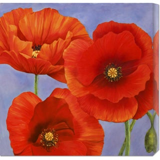 Global Gallery Luca Villa 'Dance of Poppies II' Stretched Canvas