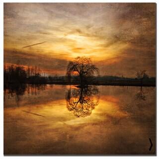 Philippe Sainte-Laudy 'Ball Gold' Canvas Art