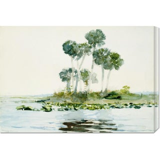 Global Gallery Winslow Homer 'St. Johns River, Florida' Stretched Canvas Art