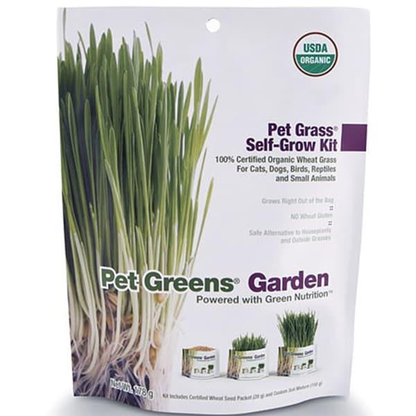 Bellrock Growers Pet Greens Cat Organic Self Grow Kit