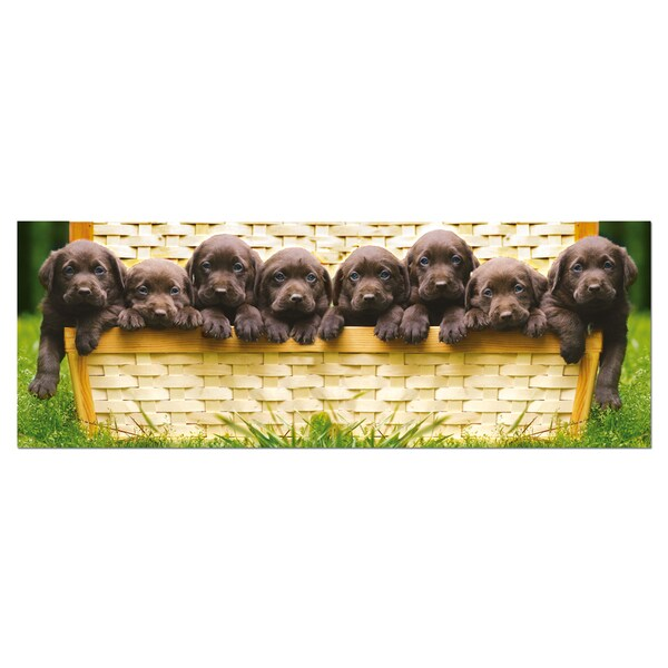 Puppies Panorama Series Puzzle: 1000-piece Jigsaw Puzzle