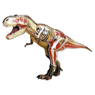 John N. Hansen Co. 4D T-Rex Anatomy Model