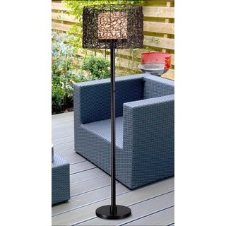 Design Craft Burcei Indoor/ Outdoor Bronze 58-inch Floor Lamp