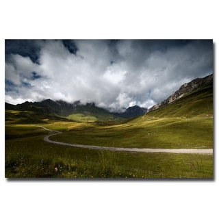 Philippe Sainte Laudy 'Dark Green' Canvas Art