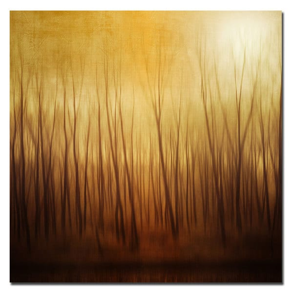 Philippe Sainte-Laudy 'Ghost Forest' Canvas Art