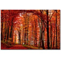 Philippe Sainte-Laudy 'The Red Way' Canvas Art - Multi