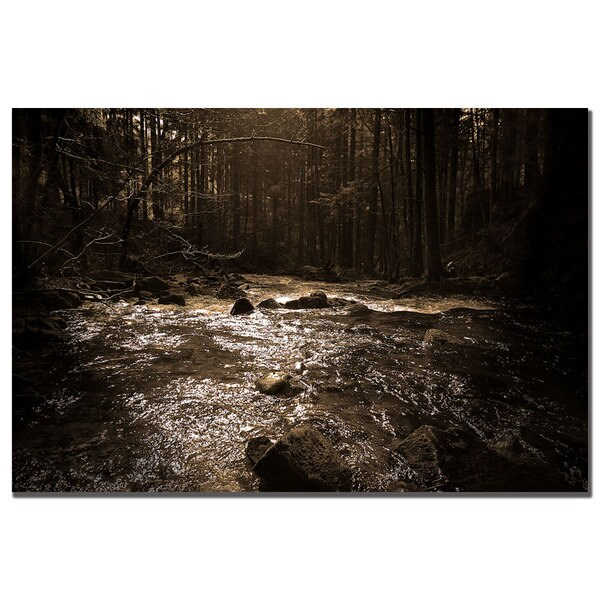 Philippe Sainte-Laudy 'The River' Canvas Art