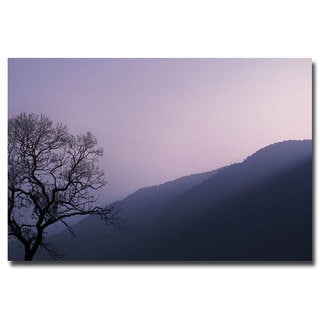 Philippe Sainte Laudy 'Purple Hours' Canvas Art