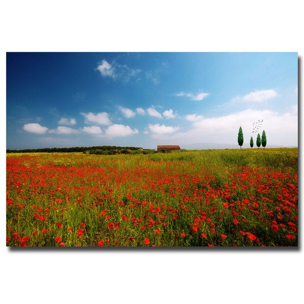 Philippe Sainte Laudy 'Red Carpet' Canvas Art
