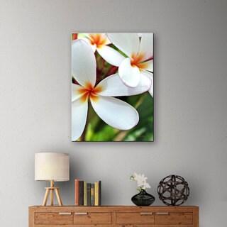 Kathy Yates 'White Plumeria' Canvas Art