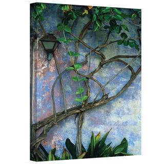 Kathy Yates 'Vine and Wall' Canvas Art