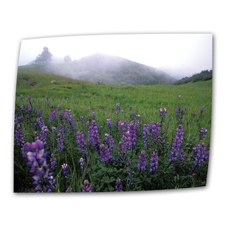 Kathy Yates 'Figueroa Mountain with Fog' Wrapped Canvas Art - Multi