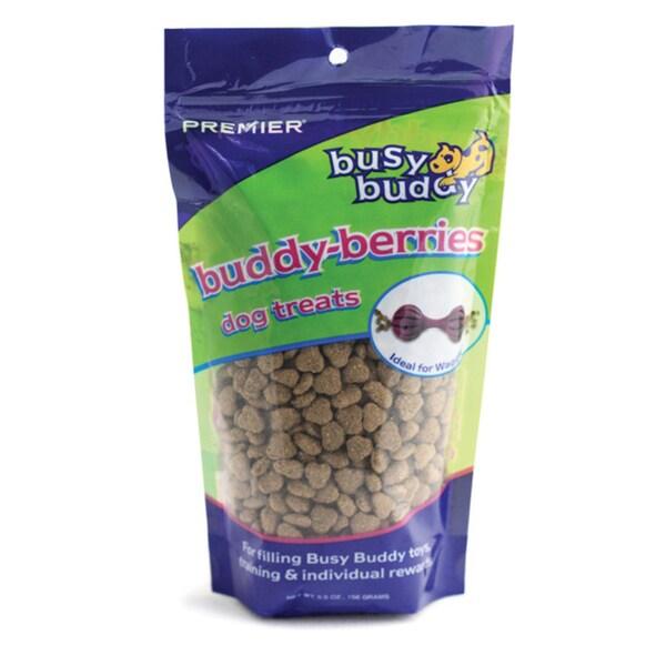 Premier Busy Buddy Berries Dog Treats