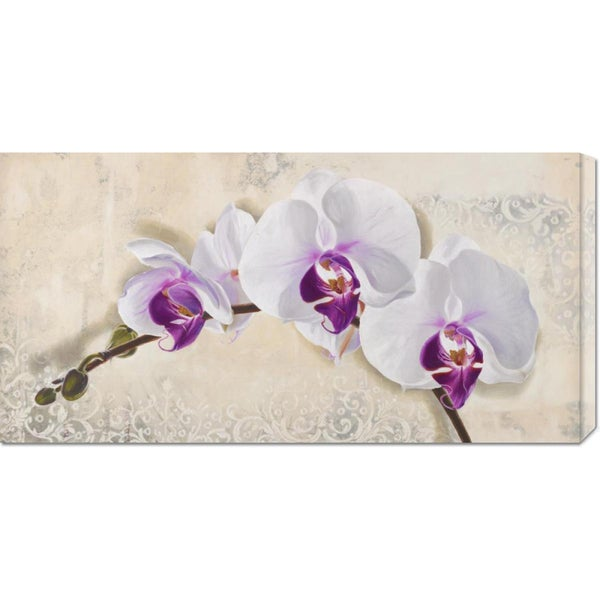 Global Gallery Elena Dolci 'Royal Orchid' Stretched Canvas Art