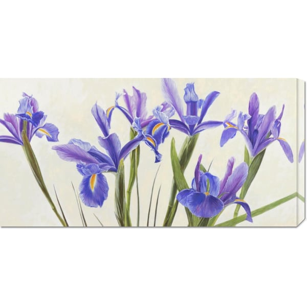 Global Gallery Elena Dolci 'Iris' Stretched Canvas Art