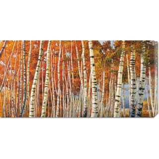 Global Gallery Adriano Galasso 'Betulle d'autunno' Stretched Canvas Art