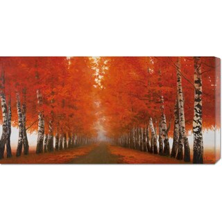 Global Gallery Adriano Galasso 'Viale di betulle' Stretched Canvas Art
