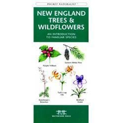 New England Trees amp; Wildflowers Book