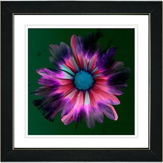 Studio Works Modern 'Fire Flower - Pink' Framed Print