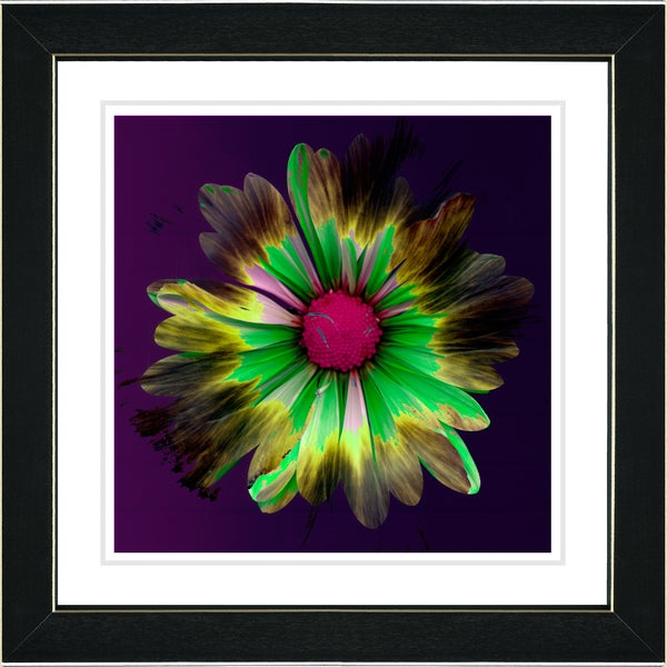 Studio Works Modern 'Fire Flower - Green' Framed Print