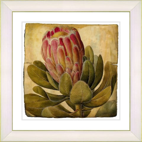 Studio Works Modern 'Vintage Antique Botanical #57' Framed Print