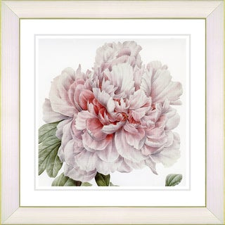 Studio Works Modern 'Vintage Botanical #54' Framed Print