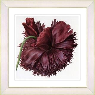 Studio Works Modern 'Vintage Botanical No. 51' Framed Print