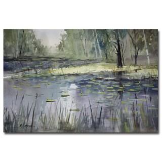 Ryan Radke 'Tranquility' Canvas Art