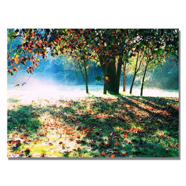 Beata Czyzowska 'Morning Moods' Canvas Art