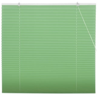 Jade Green Pleated Shades (China)
