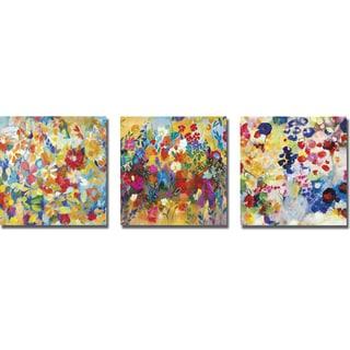 Joan Elan Davis 'Colorful Floral 3-pc set' 3-piece Canvas Art Set
