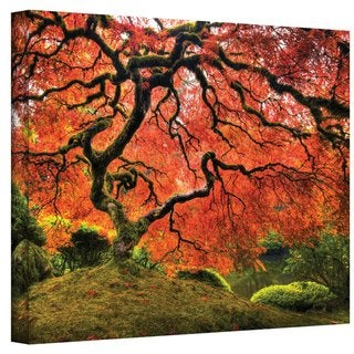 John Black ' Japanese Tree ' Gallery Wrapped Canvas