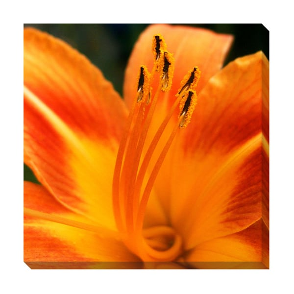Gallery Direct Orange Lily Oversized Gallery Wrapped Canvas