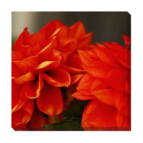Gallery Direct Orange Petals Oversized Gallery Wrapped Canvas