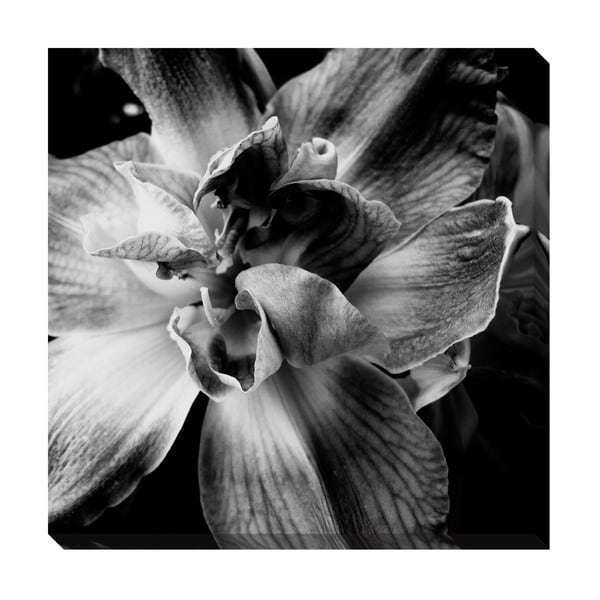 Gallery Direct Black and White Floral I Oversized Gallery Wrapped Canvas