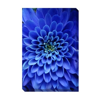 Gallery Direct Blue Aster Oversized Gallery Wrapped Canvas