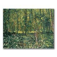 Vincent Van Gogh 'Trees and Undergrowth, 1887' Canvas Art - Multi
