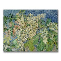 Vincent Van Gogh 'Blossoming Chesnut Branches' Canvas Art