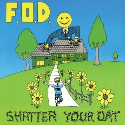 FLAG OF DEMOCRACY - SHATTER YOUR DAY