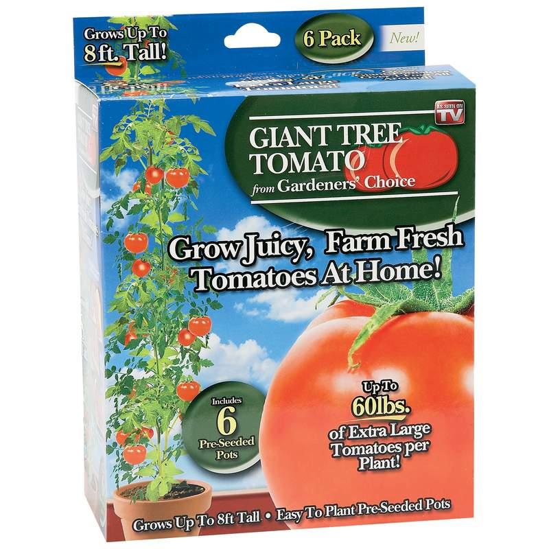 As Seen On TV Gardeners' Choice Giant Tree Tomato (Case of 24)