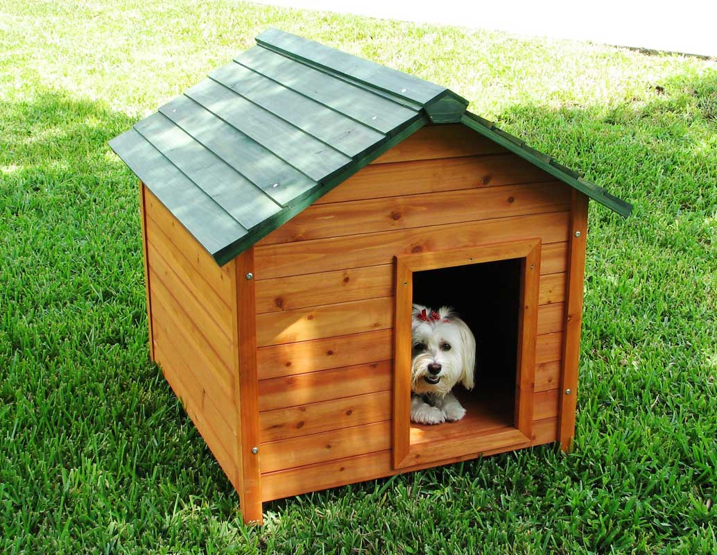 Kids Dutch Barn Wooden Playhouse With Dorma Window further Cat Treecondo likewise Double French Closet Doors furthermore Cat Barn further News Metal Frame Homes On Metal Framed Houses Metal Frame Homes. on barn cat house plans