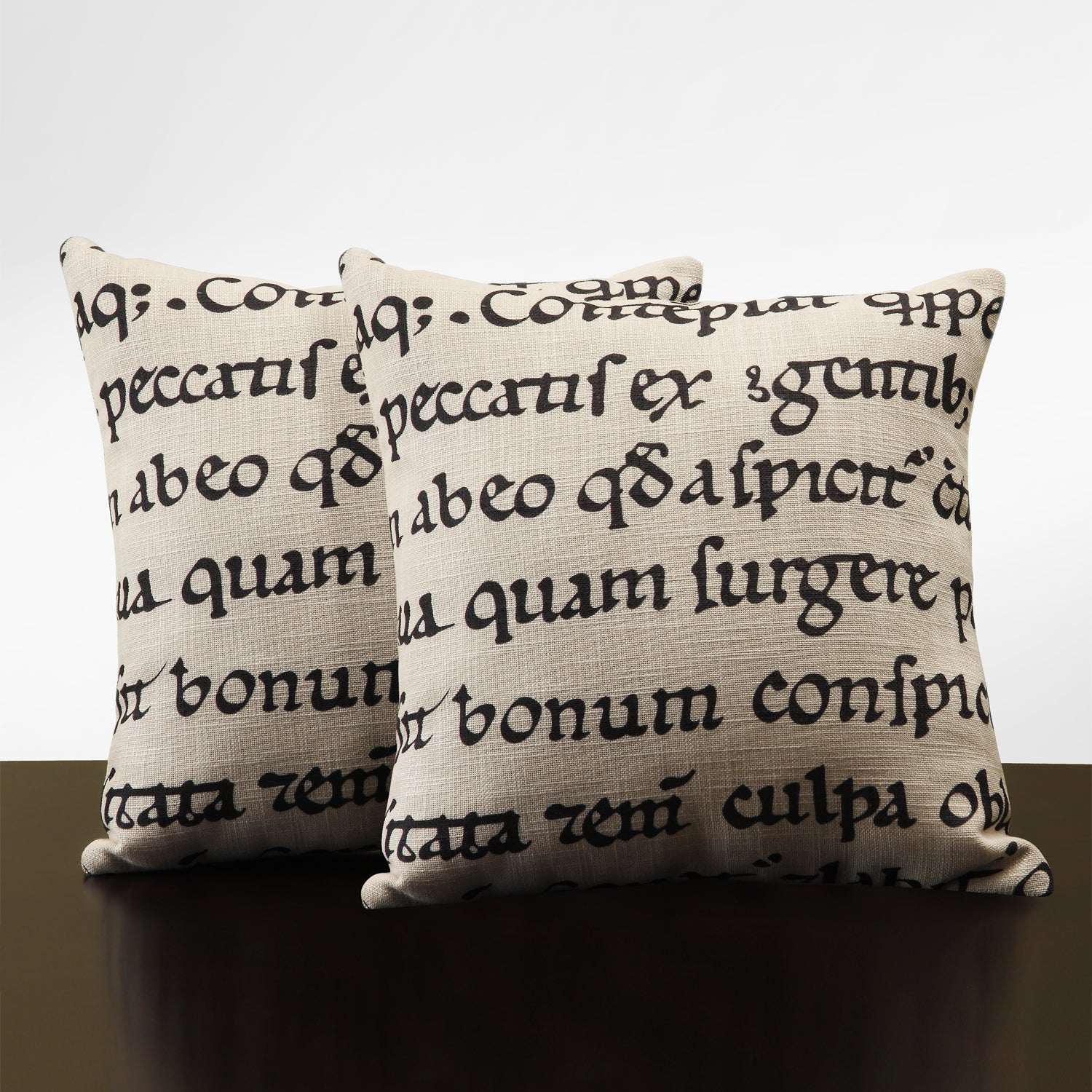 Linen 18-inch Linen Latin Script Throw Pillows (Set of 2)