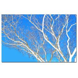 Kathie McCurdy 'Spring Tree' Canvas Art