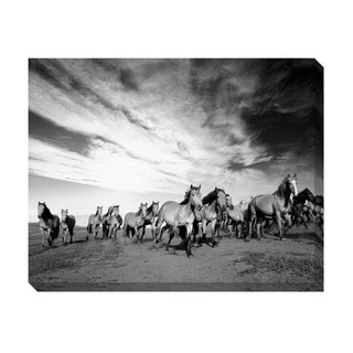 Gallery Direct Wild Horses Oversized Gallery Wrapped Canvas