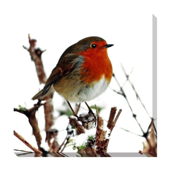 Gallery Direct Robin Oversized Gallery Wrapped Canvas
