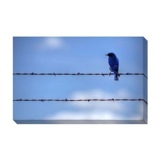 Gallery Direct Blue Bird High Wire Oversized Gallery Wrapped Canvas