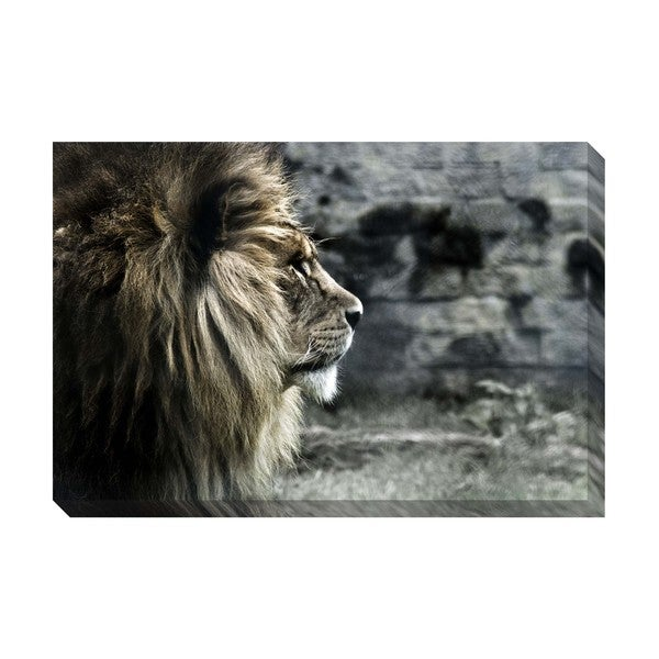 Gallery Direct King of the Lions Oversized Gallery Wrapped Canvas